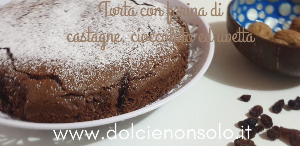 Torta con farina di castagne, cioccolato ed uvetta